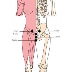 OS H35 - Tonique tachyonisé pour femme